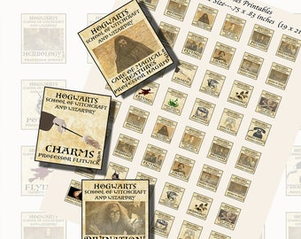 Harry Potter Hogwarts Classes, SCRABBLE TILE SIZE (.75 x .83 Inches or 19 x 21 mm), 24 Illustrations Included
