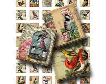 SALE- Vintage Birds - Digital Collage Sheet   - .75 x .83 Scrabble Size - INSTANT DOWNLOAD