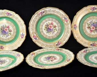 6 Rosenthal Desert Plates Set, Fabulous plates, China Made in Germany, Antique, Floral, 100 yrs old,  #1767