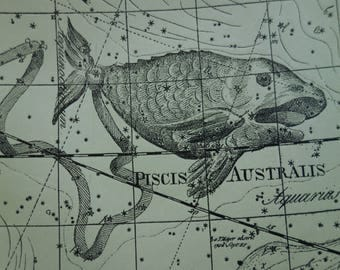 ASTROLOGY antique print - old star chart Dutch vintage astronomy poster of Aries Pisces zodiac sign hemisphere constellation stars