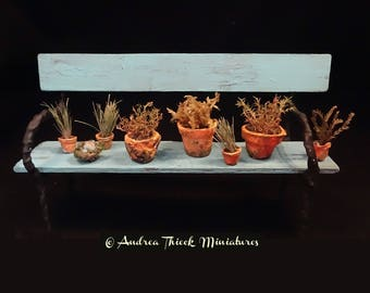 Miniature Dried out  Herbs & Plants - 1-12 scale OOAK