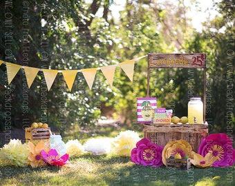 Lemonade Stand Photography Backdrop, Summer Time, Lemon, Sunshine, Refreshments, Sweet, Sugar, Vinyl, Poly Paper, many sizes, Girls, Boys