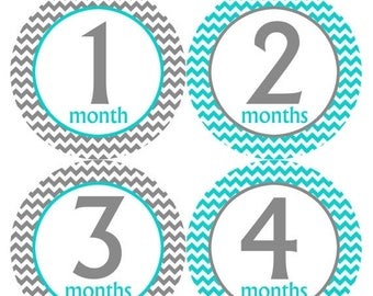Monthly Stickers Monthly Baby Stickers Baby Month Milestone Stickers Baby Month Stickers Month to Month Bodysuit Stickers Shower Gift 201