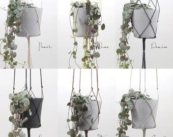 GOLD BROWN  | modern macrame hanging flower pot hanging planter waxed cotton plant hanger kitchen living room vase basket hanging flowers