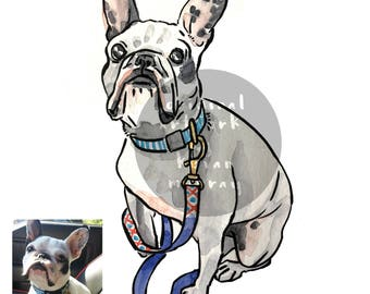 Custom Illustrated Pet Portrait