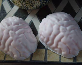 Brain soap, realistic brain party favor,handmade goat milk brain soap,zombie brains,human brain sculpted soap, neurologist gift