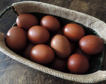 Hand Blown Free Range Chicken Eggs {Chocolate} Spring Easter Eggs, Primitive Rustic Farmhouse Decor, Pysanki Crafting, Bowl & Basket Filler