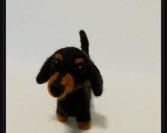 Dachshund,  Needle Felted Dog Gift