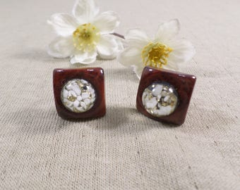 Beautiful Vintage Gold Tone Pair Of Lucite Screw Back Earrings  DL#3288