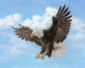 Eagle - Bald eagle - eagle painting - eagle art - american eagle - soaring eagle - Open edition print