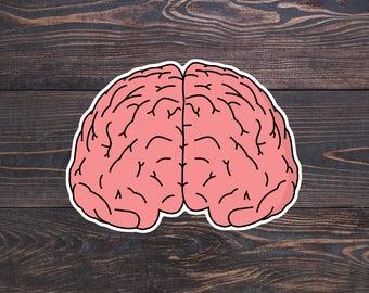 Anatomical Brain Sticker, Brain Anatomy Stickers, Science Geek Decals, Brain Cancer Sticker, Neurology, Neuroscience, Brain Surgeon Gifts