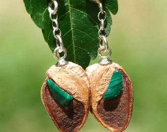 Earrings made of silver, hakea seed pod and malachite
