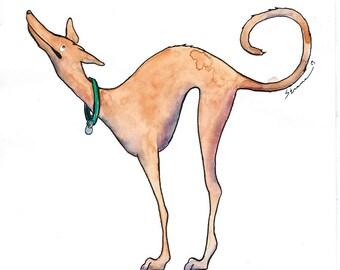 Good Morning Tesla, Original Greyhound Ink & Watercolor Illustration