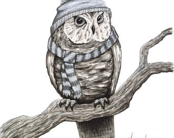 Winter Owl Illustration