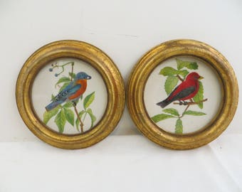 Pair Vintage Theorems Bluebird and Scarlet Tanager 1981 Barbara Novak Framed Round