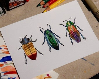 Original Insect Art, A6 Beetle Drawing, Insect bug Sketch, A6 colored pencil, Entomology, Realistic Insect, Beetle Artwork, Jewel Beetle