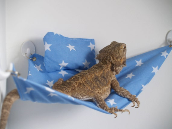 like this item  blue star bearded dragon hammock extras  rh   etsy