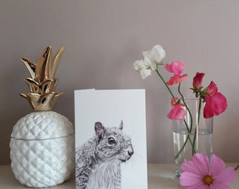 squirrel card | greetings card | wildlife card | birthday | squirrel illustration | wildlife print