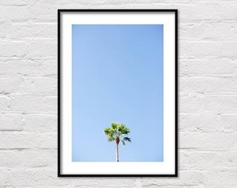 Palm Tree Print, Palm Print, Tropical Wall Art, Palm Tree Photography, Coastal Art, Beach House Decor, Printable Poster, Digital Download
