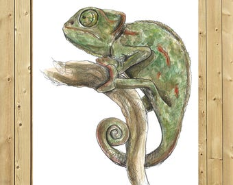 Chameleon II, illustration in watercolor, blade A5, A4 or A3, chamäleon art, wall decor
