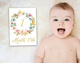 Baby Milestone Cards, Baby Month Signs, Monthly Baby Cards, Printable Milestone, Monthly Milestone Cards, Baby Girl Cards, Baby Growth Cards