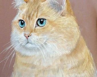 Cat Portrait, Original Artwork, Cat with amazing eyes, Drawing