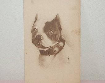 Boston Bull Terrier Post Card 1911 Series #697, ln Original Sleeve, Un-used,