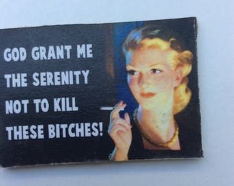 Funny magnet 2 free USA shipping