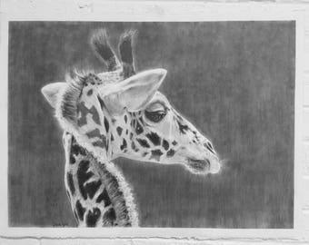 Giraffe original drawing