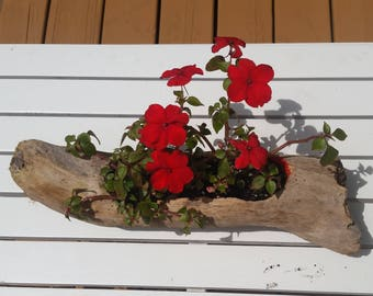 D001_Driftwood Planter + Tea Candle Holder