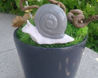 Pot snail decoration, stabilized foam