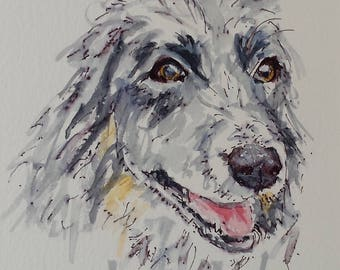 Border Collie Original Watercolour & Ink. Original Dog Drawing.