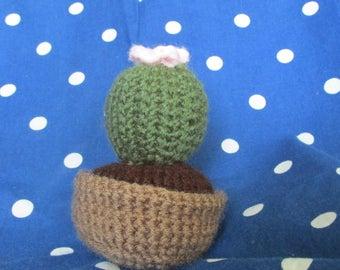 Small Barrel Cactus Amigurumi