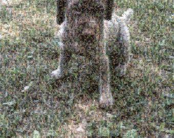 Custom Photo Mosaic - Digital Download