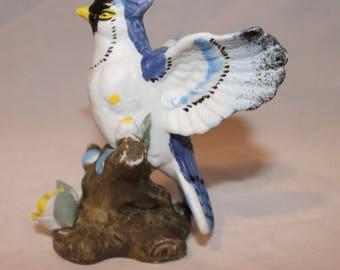 Porcelain Blue Jay