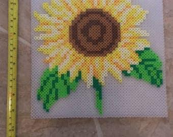 Sunflower Perler