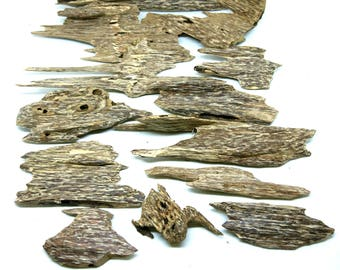 VietNam Wild Ant Agarwood chips Class AD Rank S - 200 grams- Oud - Resin- عود