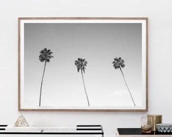 Palm Tree Print - Palm Beach Wall Art, Digital Download, Black And White Photo, Holiday Decor, Minimalist Art, Beach Print, Hawaii Print