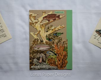 Handmade Blank Greeting Card (Folded A6) - Coral Reef - Golden Guide to FISHES