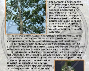 BOCOTE MAGIC Properties, BoS Instant Download Page, WaND, Bark Scrolls, Book of Secrets, Glamerie Pages