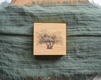 Tree Art - Lover's Oak Pen and Ink Drawing Art Print on Wood Block Panel by Heather L. Young
