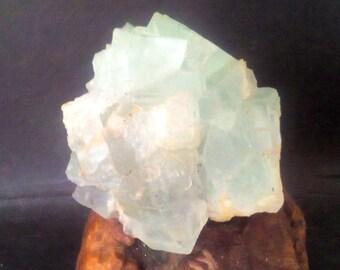 Beautiful FLOURITE Crystal Specimen