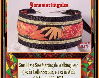 "Jansmartingales, Black Dog Collar Leash Combination Walking Lead,  Italian Greyhound, Small Dog Size, 9 1/2"" Collar Section. iblk179"