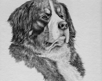 CUSTOM hand drawn dog portrait