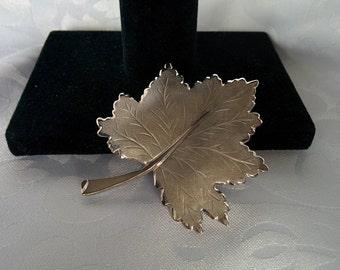 Large Maple Leaf Brooch, Silver Maple Leaf Brooch, Maple Leaf