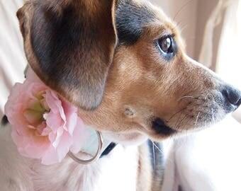Dog Collar Flower - Set of 3 - Pink Purple Yellow - Pet Bow Attachment - Removable - Gardenia Zinnia Rose - Shiny Gem Center - Girl doggie