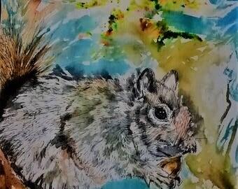 Original Squirrel Ink Drawing with acorn