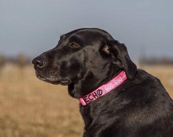 "1"" Custom Embroidered Dog Collar"