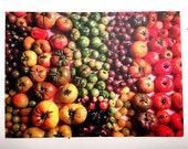 Photo Postcard - Tomato Gradient