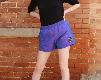 Surf Style Vintage 1990s Iridescent Board Shorts